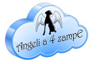 angelia4zampe.it